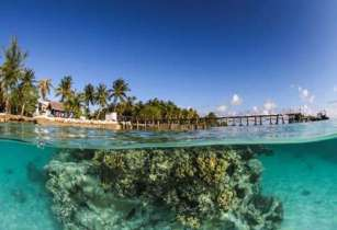 Diving_in_French_Polynesia_#04_3