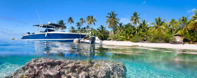 Diving_in_French_Polynesia_#04_8