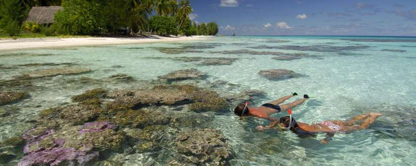 Diving_in_French_Polynesia_#08_2