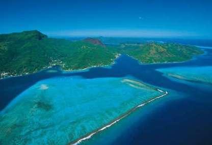 item_img_fr_polynesie_iles_societe_huahine_t_mckenna_13347
